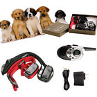 1000yard Remote Dog Training System w/ Rechargeable Waterproof Shock Collar USA