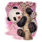 Cherry Blossom Panda Bear  Sweatshirt/Longsleeved Tshirts    Sizes/Colors