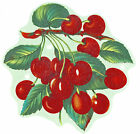 Ceramic Decals Red Cherries Cherry Fruit Bunch Branch Green Leaves