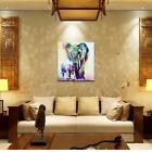 Modern Art Oil Paintings Abstract Elephant Cartoon on Canvas Arts Unframed Decor