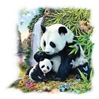 Panda Valley  Mom and Cub     Tshirt   Sizes/Colors