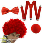 RED NOSE DAY CURLY AFRO WIG AND ACCESSORY SET UNISEX FANCY DRESS COMIC SPORTS