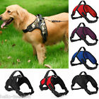 Hot Summer Pets Dog Mesh Saddle-type Haulage Rope Fit Large , Medium-size Dog