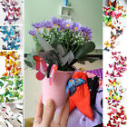 Room Decorations Home DIY  Décor 3D Butterfly Design Decal Art Wall Stickers