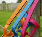 Rhinegold (Metal Free) Field Safe Nylon Turnout Headcollar Foal - Ex Lge COLOURS