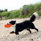 Dog Frisbee Dog Disc Thermoplastic Rubber (TPR) Floatable Robust Dog Toy 18 cm