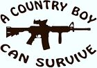 """""""A COUNTRY BOY CAN SURVIVE"""" w/ M4D1  Vinyl Decal  U Pick Size & Color(23 differ)"""