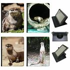 Otter Animal Universal Folio Leather Case For Most Tablets