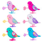 Little Live Pets Tweet Talking Bird (Series 7) Choice of Character NEW (One Supp