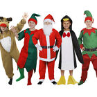 BOYS CHRISTMAS THEMED FANCY DRESS COSTUMES CHILDS FESTIVE  KIDS OUTFIT ANIMAL