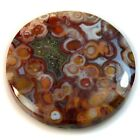 Natural Indonesian Fossilized Red Palm Root Agate Cabochon Collection
