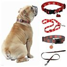 Bobby Bandit Nylon Dog Lead And Collar Set With Tag | Choice Of Sizes And Colour