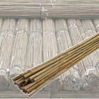 Bamboo Canes Strong Heavy Duty Professional Garden Plant Support Sticks 4FT-8FT