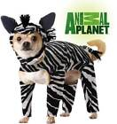 Pet Animal Planet Zebra Licensed Pet Costume