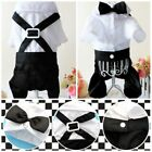 Pet Dog Puppy Clothes Wedding Party Suit Tuxedo Costume Collared Shirt US Stock