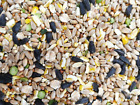 5kg Sunflower Hearts Premium Bakery Grade Dehulled Kernels for Wild Bird Food