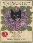 THE BLACK CAT MAGAZINE COVER 1898 SHORTSTORY AMERICAN VINTAGE POSTER REPRO