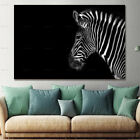 Black and White Zebra Wild Animal Canvas Painting Wall Art Picture Home Decor