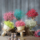 Natural Dried Gypsophila Full Dried Flower Wedding Party Supplies Home Decor Pp