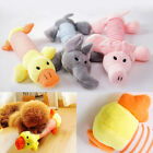 Pet Funny Toys Puppy Chew Playing Squeaker Squeaky Plush Sound Dog Toy UK