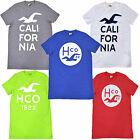 Hollister Mens T-Shirt Graphic Crew Neck Short Sleeve Tee Casual New Nwt M L