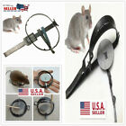 Powerful Spring Mouse Traps Catch Traps Outdoor Hunting Pests Rat/Pests Iron cat