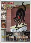 AD18 Vintage 1885 Baking Powder With Cat  Advertisment Poster A1 A2 A3