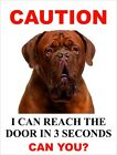 """I Can Reach The Door In 3 Seconds Can You? """"Dogue de Bordeaux"""" Dog Sign"""