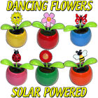 SOLAR POWERED DANCING FLOWERS FLIP FLAP PETAL UP DOWN MOTION FUN TOY GIFT INSECT