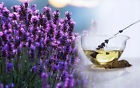 earthessence LAVENDER ~ CERTIFIED 100% PURE ESSENTIAL OIL ~ Therapeutic Grade