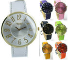 Prince London ladies large coloured leather strap watch