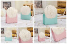 10pcs Married Wedding Favour Box Camellia Treat Candy Paper Gift Boxes BX010 NEW