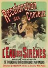 AP71 Vintage 1900 Recoloration Des Cheveux Advertisement Poster A1/A2/A3/A4