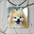 DOG POMERANIAN PENDANTS NECKLACE M - L - XL -gn8u