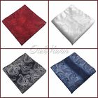 "2Pc 10"" Men Pocket Square Muted Paisley Hanky Handkerchief Good Quality Weddings"