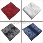 "50Pcs 10"" Men Wedding Rich Luster Party Paisley Pocket Square Handkerchief Hanky"