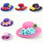 New Wedding Party Hot Gift Women Mini Top Hair Clip Fascinator Costume Accessory