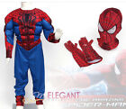 Marvel The Spider-Man 2 Muscle Deluxe Children Boys Kids Halloween Costume 3-8Yr