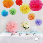 "10"" Wedding Tissue Paper Pom-Poms Party Xmas Home Outdoor Flower Ball Decoration"