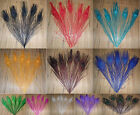 Wholesale beautiful natural peacock feathers eyes 10-12 Inch 11 color choice
