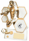 Resin Football Resolute Gold Series Trophy -3 Sizes- Free Engraving GW414