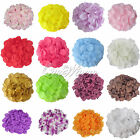 100 Silk Flower Rose Petals Wedding Party Favor Confetti Decor Bridal Supplies