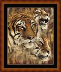 TIGER STRIPES - 14 COUNT X STITCH CHART (DMC THREADS) FREE PP WORLDWIDE