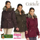 Caldene Helmsley Ladies Belted Fitted Jacket **FREE UK SHIPPING**