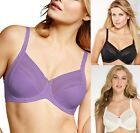 2 pack Lilyette Back Smoothing Minimizer Bras - Style 434 - All Colors