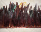 Hackle Feather Fringe brown 1 Code or 5 Code Craft/Sewing/Costume/Millinery/S