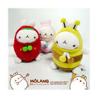 Korean Drama Goods Dignity of Gentleman - Molang Doll (ENTOY003)