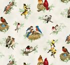 Elizabeth's Studio Beautiful Birds Quilt Fabric Fat Quarter