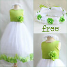 Charming Apple green rose petals bridal flower girl dress FREE CROWN all sizes
