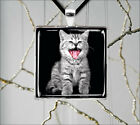 CAT GREY TIGER KITTEN #3 PENDANTS NECKLACE  -iuy5Z